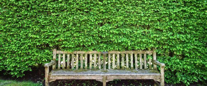 Embellissez vos clôtures avec une haie artificielle